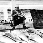 Man op vismarkt - Daressalaam